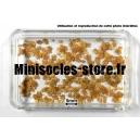 """Feuilles d'Erable """"MODEL SCENE"""" séchées 1:72-1:87"""