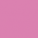 Squid Pink (17mL)