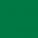 Encre : Green (17mL)