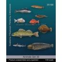 Set de poissons marins 2 (x9) Echelle 54mm