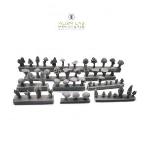 Champignons variés toutes échelles (x52)